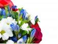 """Букет """"Червени рози и бяла хризантема"""""""